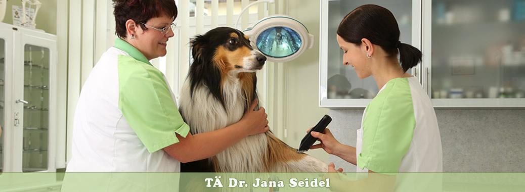 Tierarztpraxis-Weischlitz